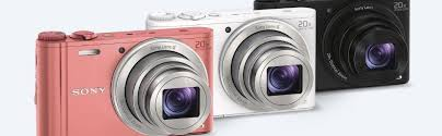 Sony WX350 Compact Camera with 20x Optical Zoom DSC-WX350